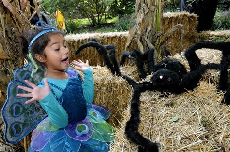 Guide to Boo at the Zoo 2015, a Halloween event at the